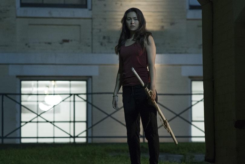 Corajosa e exímia lutadora, Colleen Wing é a Filha do Dragão! (Foto: Netflix)